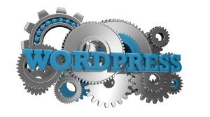 3 Reasons Entrepreneurs Use WordPress