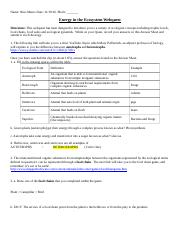 Symbiosis Internet Worksheet 22