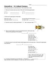 Bsc Biology 1