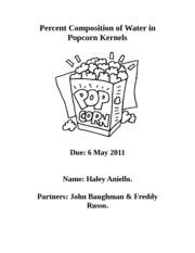 Qualitative Lab Report Pop Corn Experiment