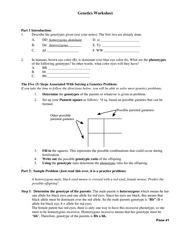 D Genetics Worksheet