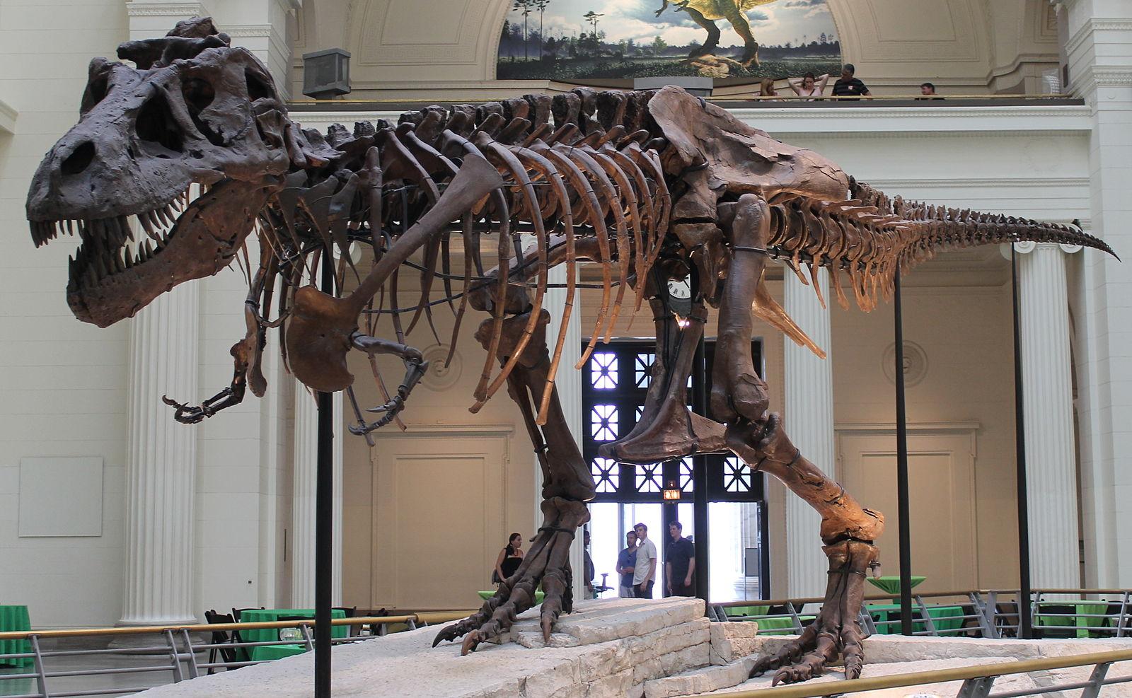 Big Fight Over Big Dinosaur Bones – Courthouse News Service