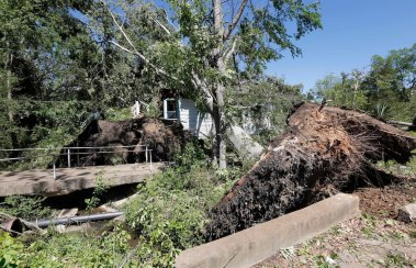 One of Sunday's storms uprooted these two massive trees into this Durant, Miss., home, photographed Monday, May 1, 2017. Authorities speculate there might have been as many as 20 areas hit by strong winds Sunday, throughout the state. (AP Photo/Rogelio V. Solis)
