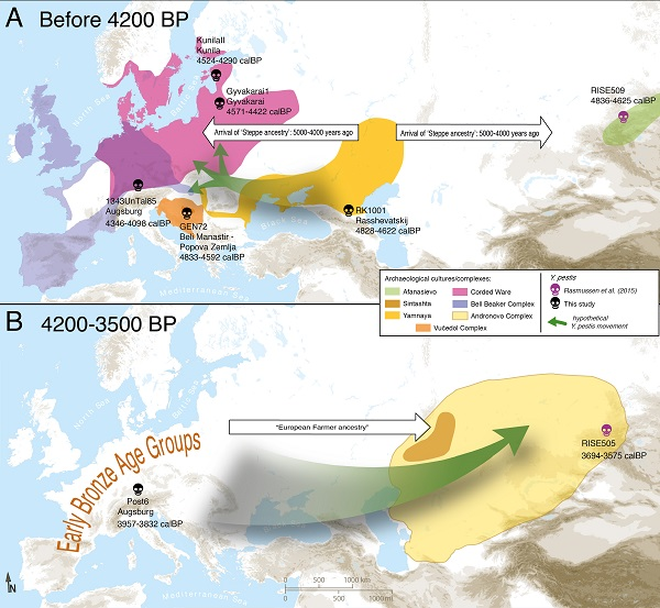 Plague first came to Europe during the Stone Age