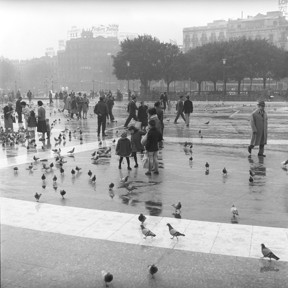 Misty morning dancing with pigeons. From Walt Girdner's Europe collection.