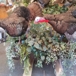 Mehlhop Four Season Taxidermy (31)