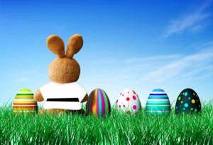 Easter Judo