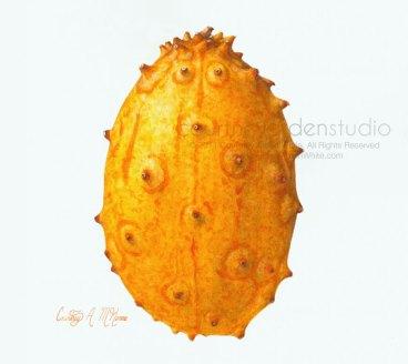 Spiny Horned Melon