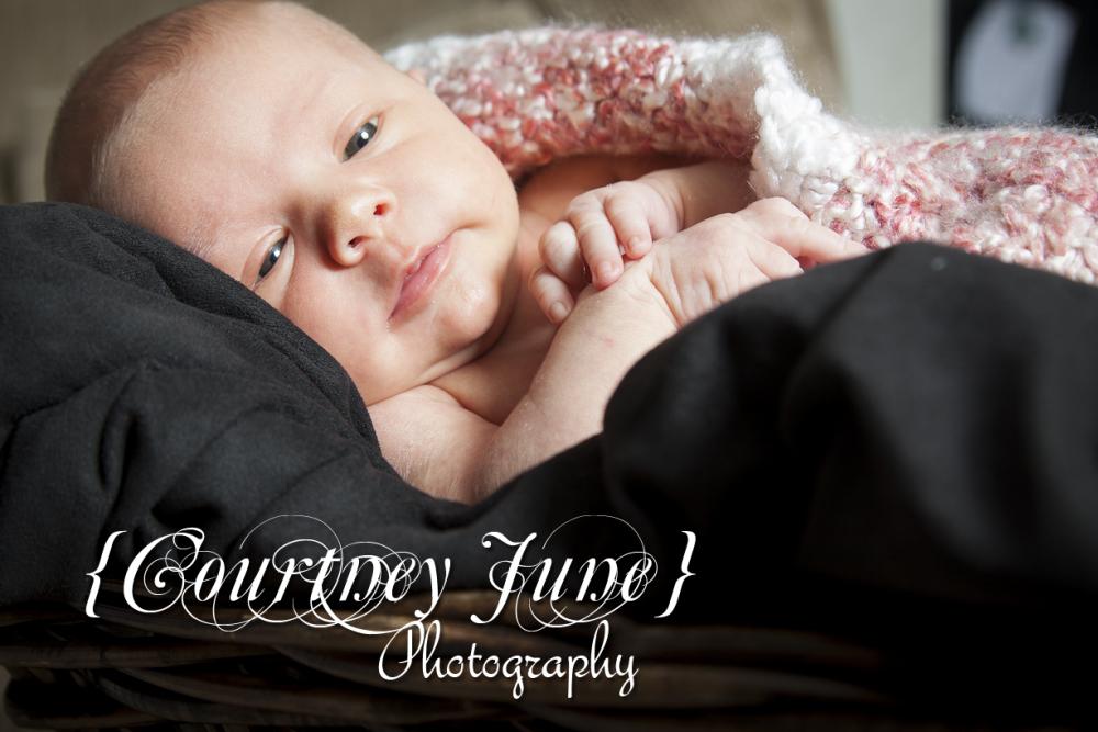 newborn baby family ramona san diego photography