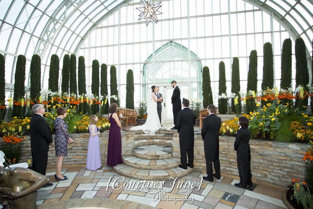 Heartland St Paul Como Zoo Sunken Garden Conservatory Minneapolis Wedding  Photographer