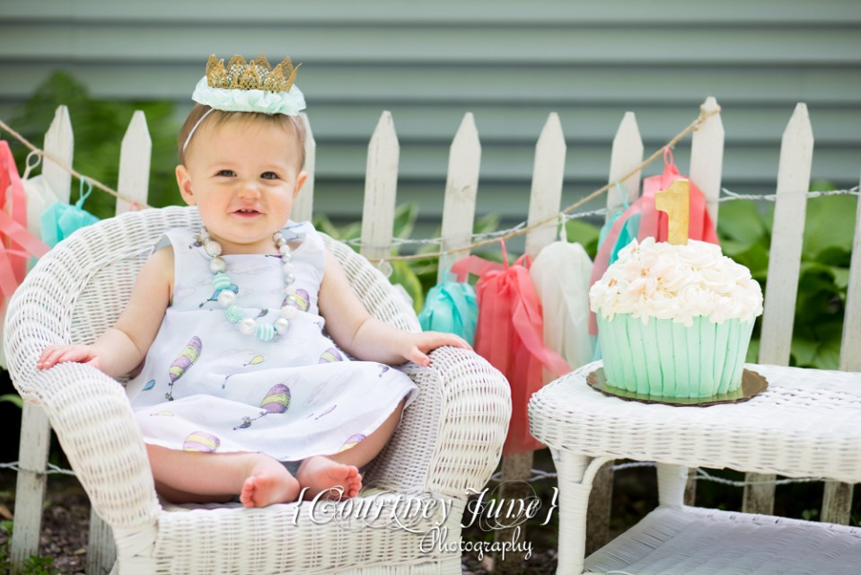 first-birthday-party-dr-suess-minneapolis-family-photographer-first-birthday-photographer-03