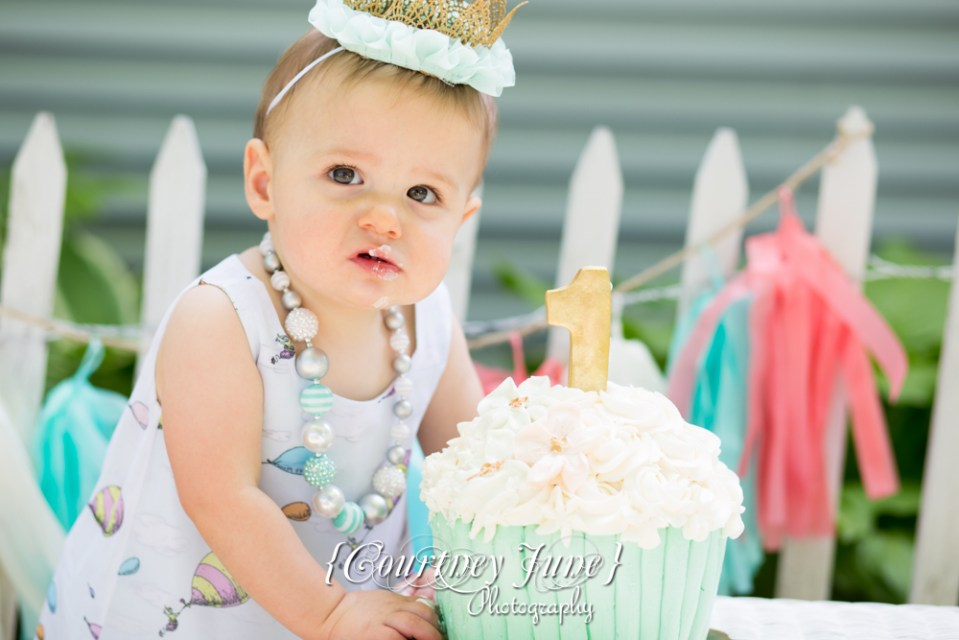 first-birthday-party-dr-suess-minneapolis-family-photographer-first-birthday-photographer-18