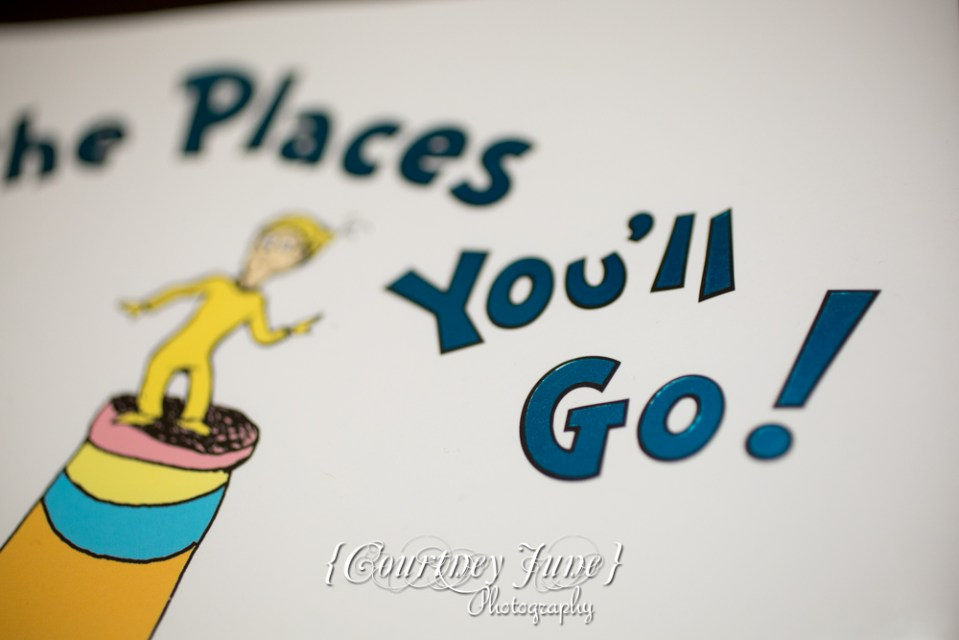 first-birthday-party-dr-suess-minneapolis-family-photographer-first-birthday-photographer-30