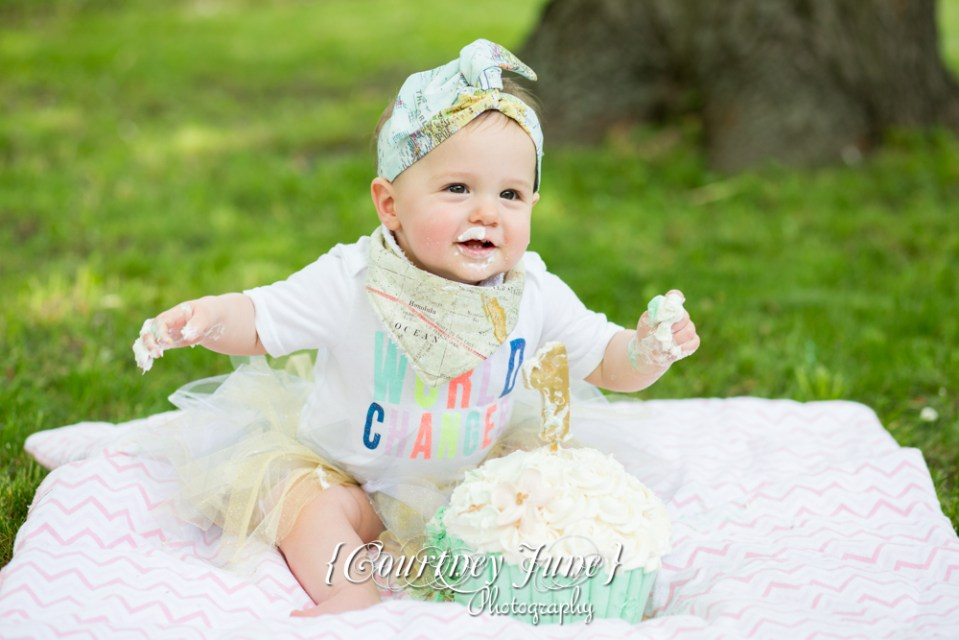first-birthday-party-dr-suess-minneapolis-family-photographer-first-birthday-photographer-39