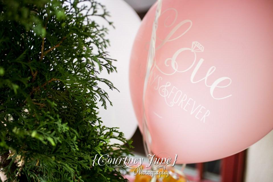 minneapolis-wedding-photographer-bridal-shower-photographer-forrest-lake-wedding-photographer-wedding-details-03