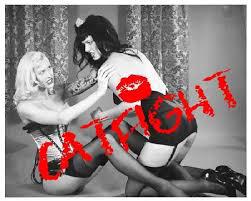 cat fight, women fighting
