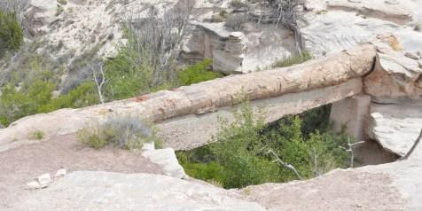 Agate Bridge - 110 foot petrified log bridge
