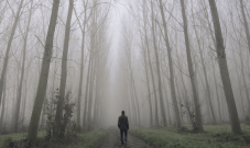 man walking through woods alone