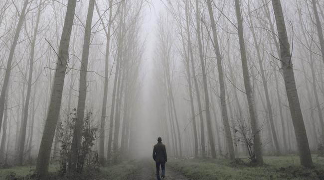 man walking through woods alone