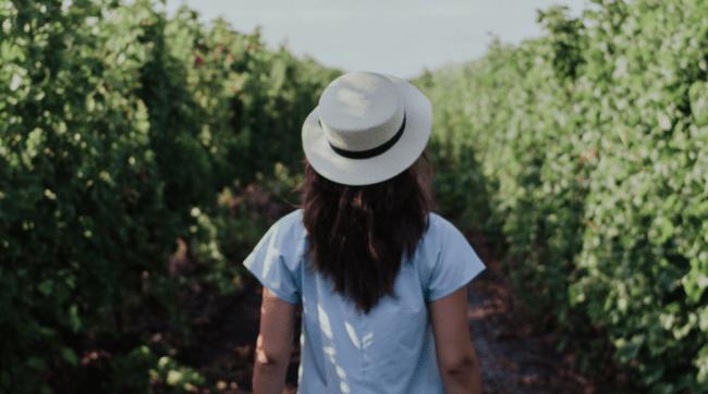 woman walking through garden hedges