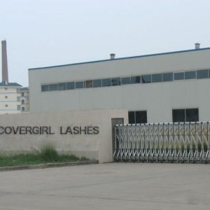 Covergirl Mink Eyelashes Wholesale Factory