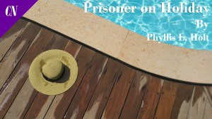 Prisoner on Holiday eBook