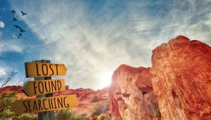 Lost – Sheryl's Daily Prompt