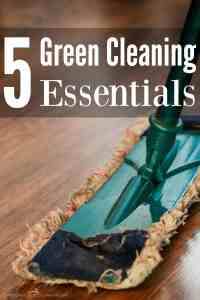 5 Green Cleaning Essentials
