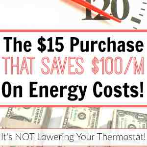The $15 Purchase That Saves $100/M on Energy Costs!