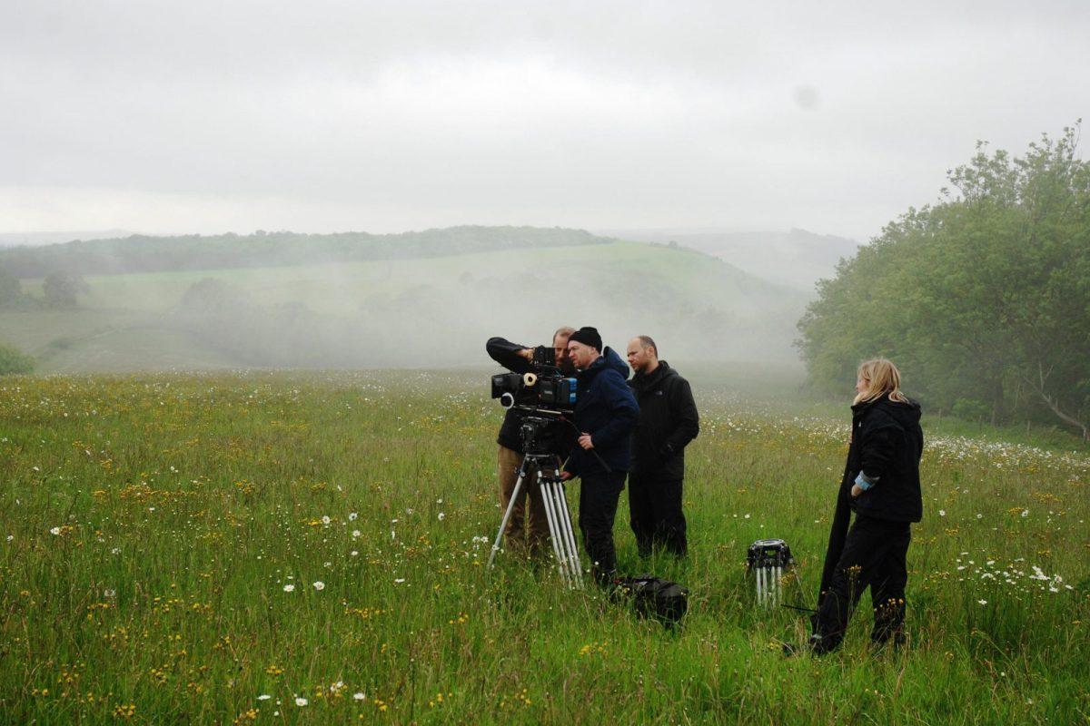 Filming and stills