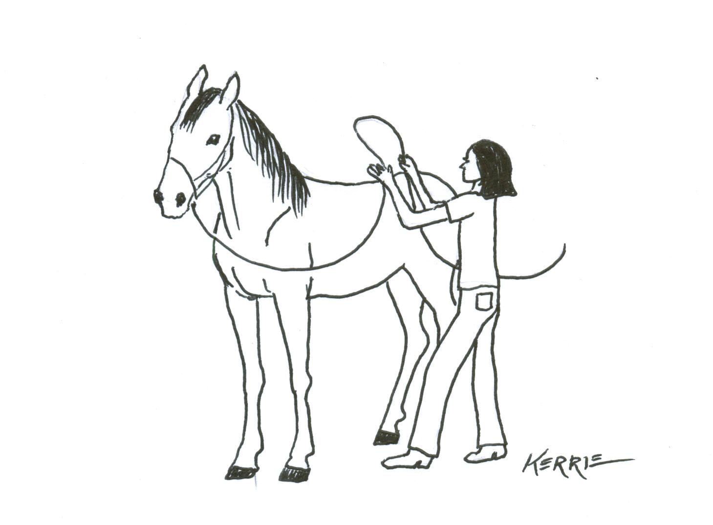 Kip Fladland Horse Training Clinic Horse Groundwork Tips