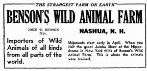 1936 clipping