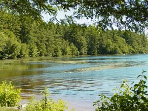 Massabesic Lake 2002