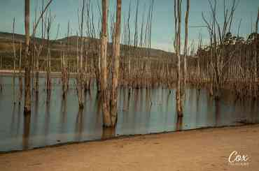 grampians national park lake bellfield