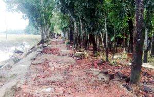 চকরিয়া-পেকুয়ায় ঢলের পানিতে বিধ্বস্ত ৬০ হাজার বসতঘর