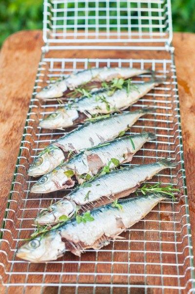 Receita de sardinhas portuguesas na brasa | Cozinha do João
