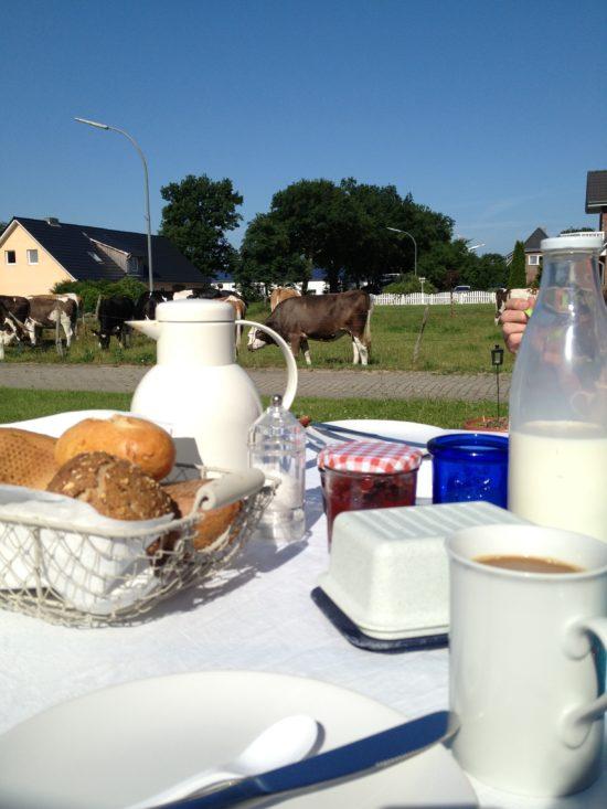 Sonntagsfrühstück auf der Terasse mit Blick auf die Kühe