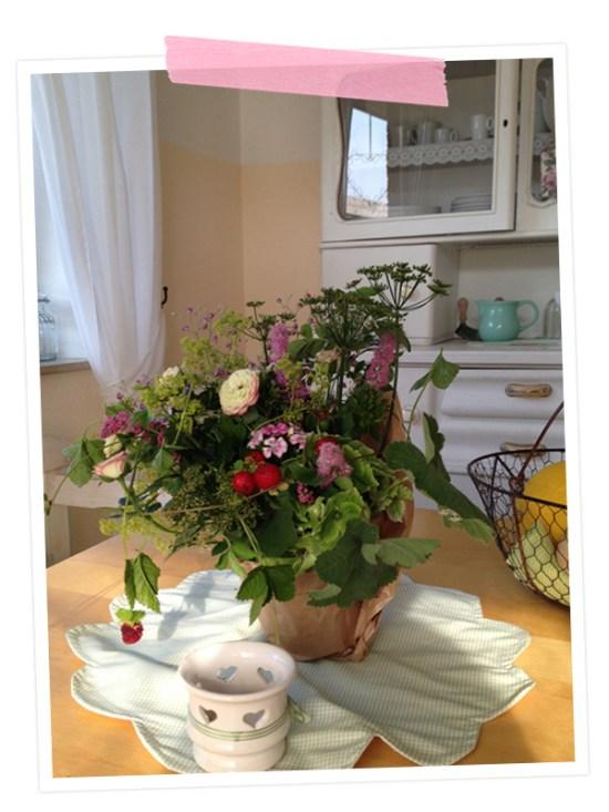 Verliebt in die Blumen und die liebe Geste einer Nachbarin, die uns mit diesen netten Blumen im neuen Zuhause willkommen geheissen hat!