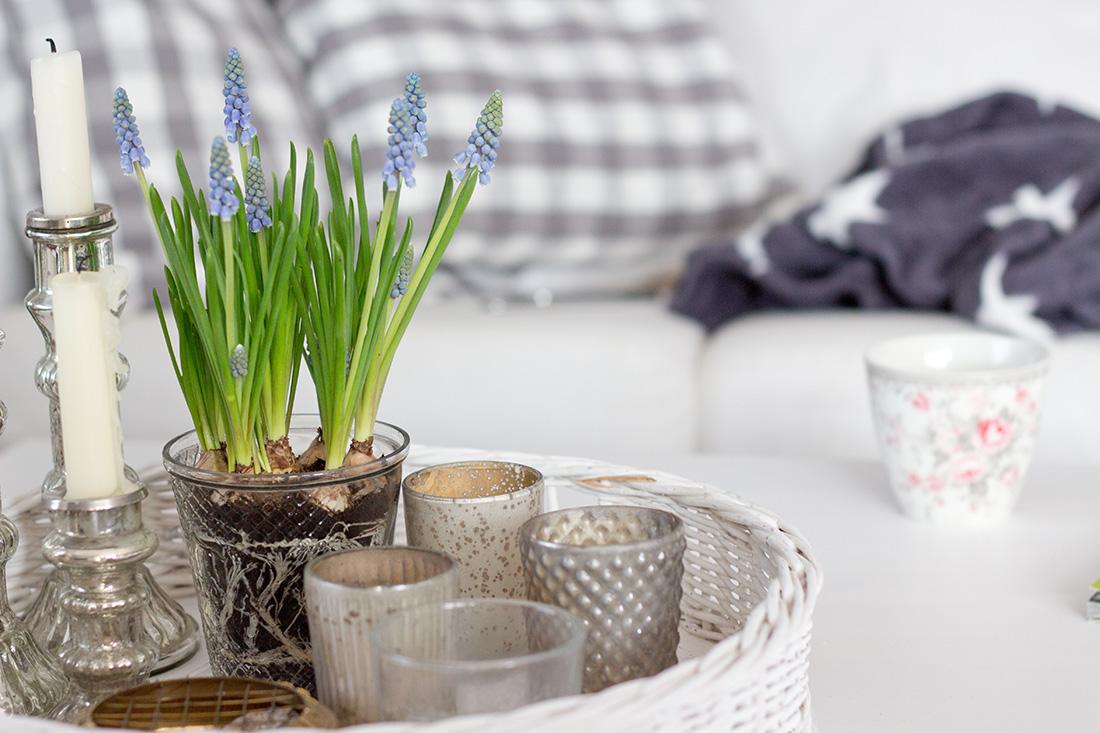 Bauernsilber - Fühling und Sommer Trends 2015 - Interior Design, Sternendecke, Fleece Grau