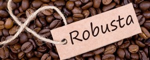 C_Robusta+beans
