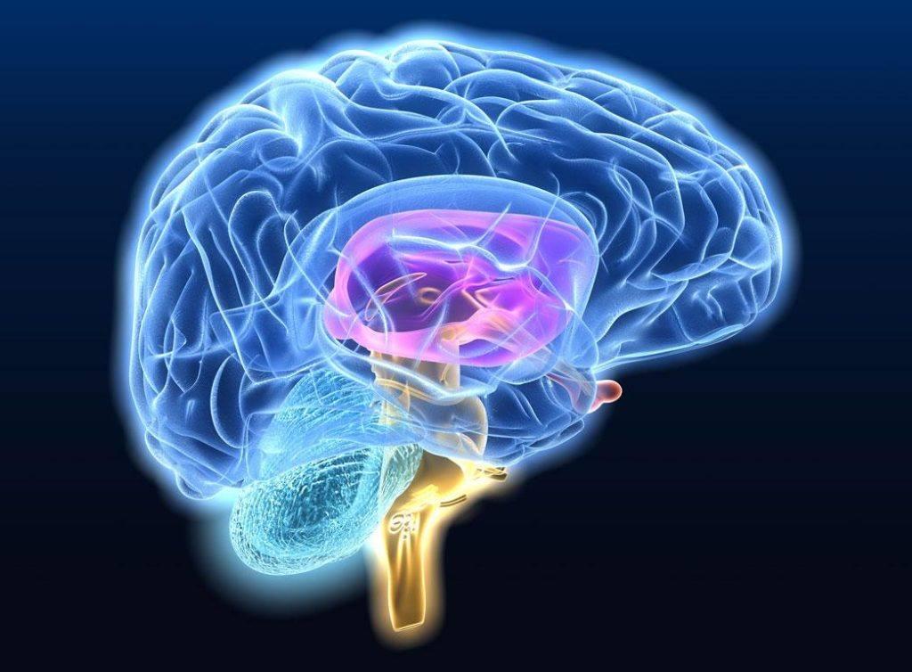 神经退行性疾病