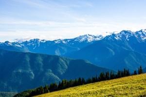 Cascade Pacific Action Aliance