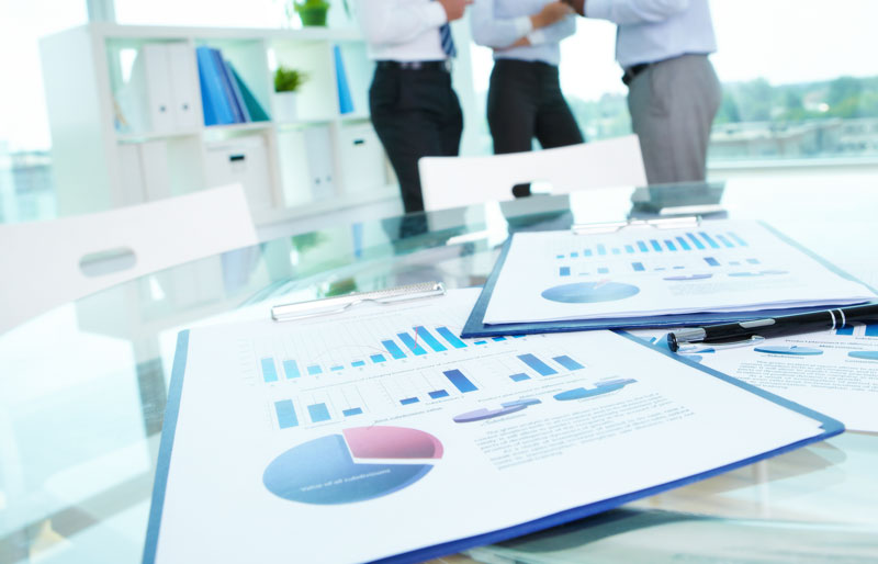Governance Of Chartered Professional Accountants Of Canada