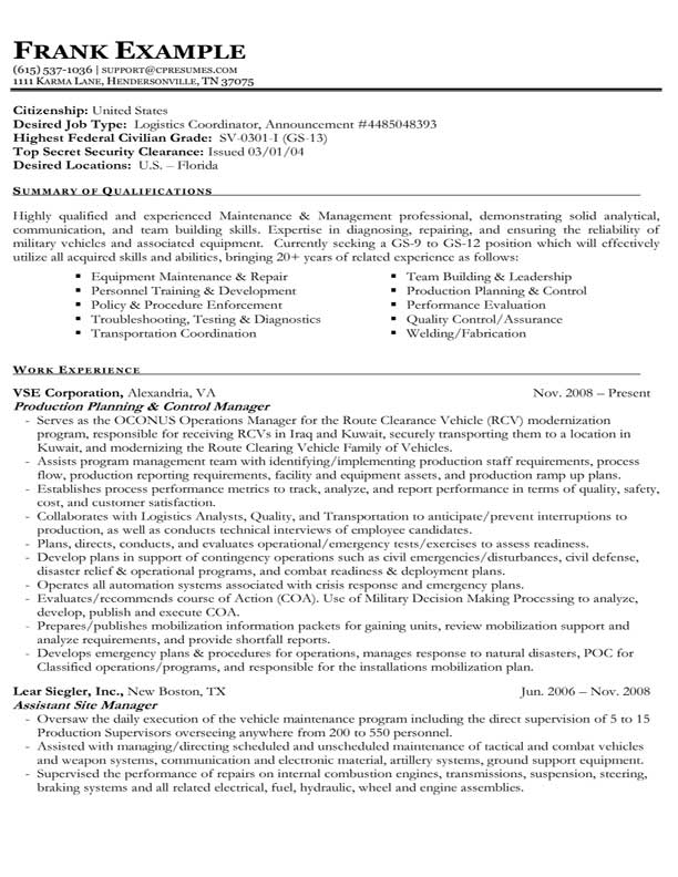 example federal government resume sample