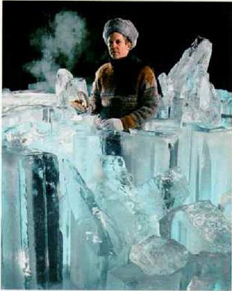 Image result for otisci u ledu