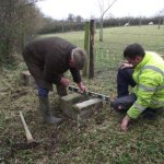 preparation for a new bee site