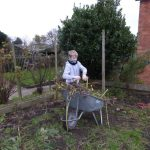 WINTER GARDENING AND APPLES