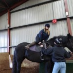 HILL VIEW RIDING STABLES, CREWKERNE