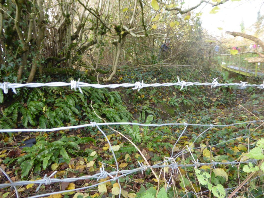 LANDSCAPE ENHANCEMENT INITIATIVE – DORSET WILDLIFE CONSERVATION TASK