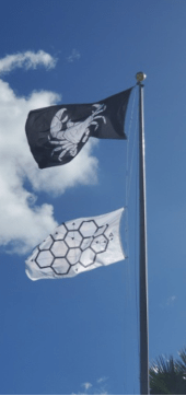 Image of the Crab Devil flag and Tempus Projects flag blowing in the wind.